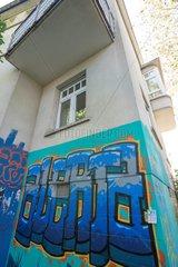 Graffiti  Fiction  Fenster