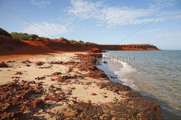 Denham  Australien  Cape Peron im Francois Peron National Park
