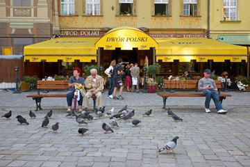 Breslau  Polen  Tauben und Menschen vor dem Restaurant Dwor Polski auf dem Marktplatz