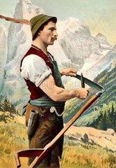 Bauer schaerft Sense  1905