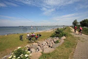 Gold  Deutschland  der Strand und der Ostseedeich mit Wanderweg