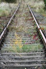 Ziesar  Deutschland  stillgelegte Bahngleise