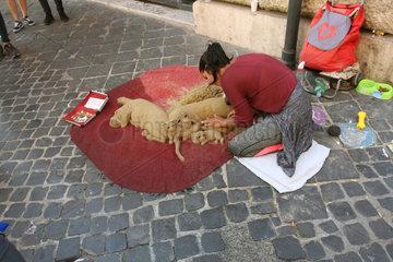 Hunde Strassenkunst in Rom