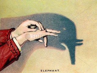 Schattenspiel Elefant 1889