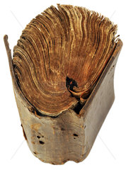 uraltes Buch  1834