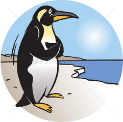 Penguin overlooking sea