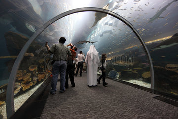 Dubai  Vereinigte Arabische Emirate  Besucher im Tunnel des Dubai Aquarium der Mall of Dubai