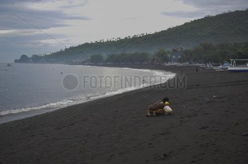 INDONESIA-BALI-MOUNT AGUNG-TOURISM IMPACTS