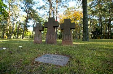 Halbe  Deutschland  Sandsteinkreuze auf dem Waldfriedhof