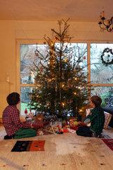 Berlin  Deutschland  Jungen bewundern am Heiligen Abend den geschmueckten Weihnachtsbaum