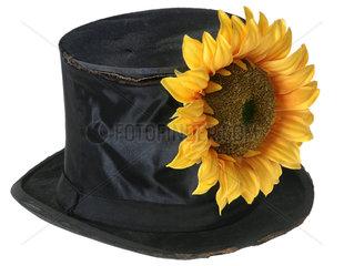 Zylinder mit Sonnenblume  Symbol Schwarz-Gruen Hamburg
