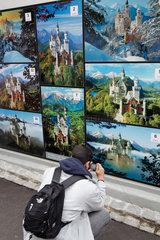 Hohenschwangau  Deutschland  Tourist fotografiert Motive des Schloss Neuschwanstein ab