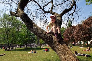 Berlin  Deutschland  Maedchen mit Kappe sitzt im Baum im Monbijoupark