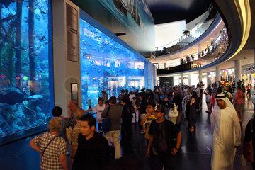 Dubai  Vereinigte Arabische Emirate  Menschen vor dem Dubai Aquarium der Mall of Dubai