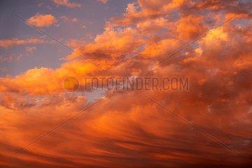 Rote Wolken - Sonnenuntergang
