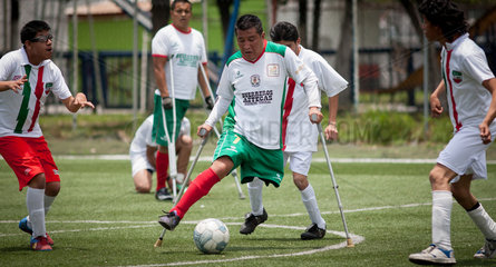 (SP)MEXICO-MEXICO CITY-2014 WORLD CUP-DISABILITY