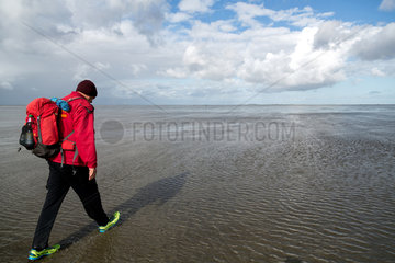 Cuxhaven  Deutschland  Wattwanderung in Richtung der Insel Neuwerk