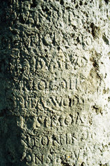Text carved in stone  close-up  full frame