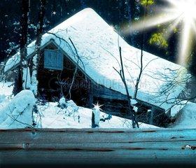 Huette Wald Winter