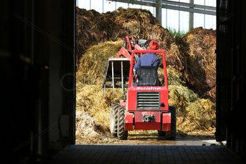 Oberoderwitz  Deutschland  Misthaufen wird mit einem Minibagger aufgeschichtet