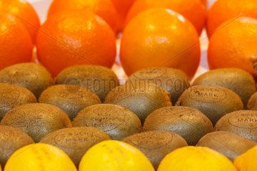 Berlin  Deutschland  Orangen  Kiwis und Zitronen auf der Fruit Logistica 2011