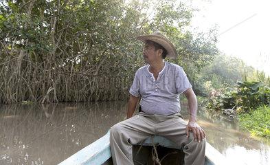 Mangrovenwald in Chiapas