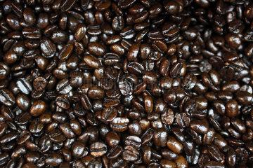 Dubai  Vereinigte Arabische Emirate  Kaffeebohnen