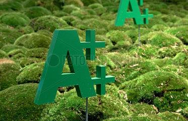 Berlin  Deutschland  das Symbol A++ fuer energiesparende Hausgeraete