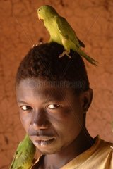 Africa  Burkina Faso  teenage boy with parrots