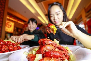 CHINA-FOOD AND BEVERAGE INDUSTRY-2018 REVENUE (CN)