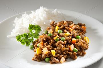 Riedlingen  Deutschland  Tofumix mit Reis
