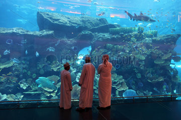 Dubai  Vereinigte Arabische Emirate  arabische Maenner vor dem Dubai Aquarium
