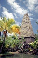 USA  Hawaii  Pacific Ocean  Oahu  Polynesian Cultural Centre  Hut