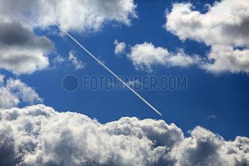 Hoppegarten  Deutschland  Kondensstreifen eines Flugzeugs und Cumuluswolken