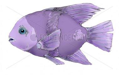 fish-purple - loeschen