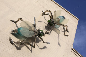 Cocoa Beach  USA  ueberdimensionale Fliegen aus Stahl an einer Hauswand