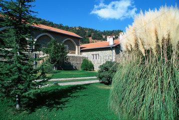 Republik Zypern - Pampasgras im Kykkos-Kloster