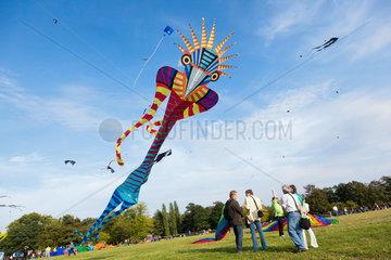 Potsdam  Deutschland  Drachenfest im Potsdamer Volkspark
