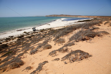 Goulet Bluff  Australien  Shark Bay