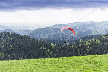 Gleitschirmflieger im Schwarzwald
