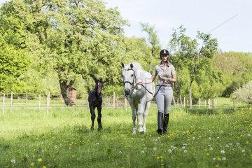 Anja Zepfel mit den Trakehner Pferden *Belle de Jour* [Mutter] (geb. 1999) und Badenfee [Fohlen] (geb. 2013)