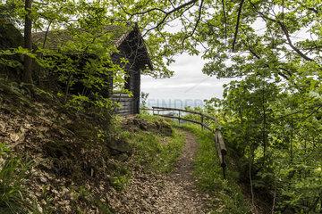 Wandern im Stadtwald Baden-Baden