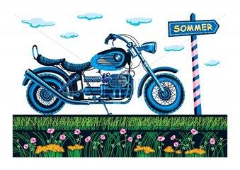 Der Weg zum Sommer