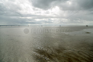 Cuxhaven  Deutschland  Wattenmeer zwischen der Insel Neuwerk und Cuxhaven