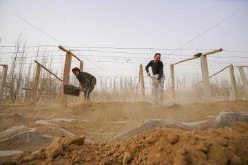 CHINA-CHUNFEN-FARM WORK(CN)