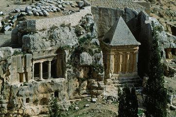 Oelbaeume im Garten Gethsemane