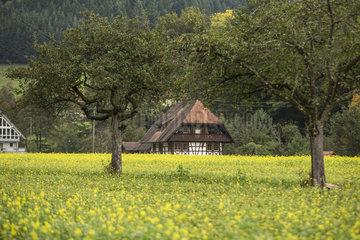 Fachwerkhaus im Schwarzwald