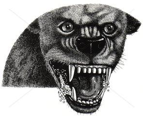 Tollwuetiger Hund