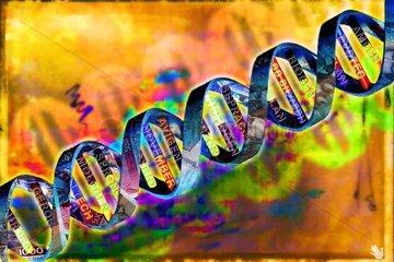 Biotechnologie DNA