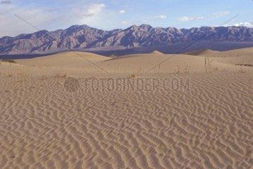 China  Gobi desert  sand dunes